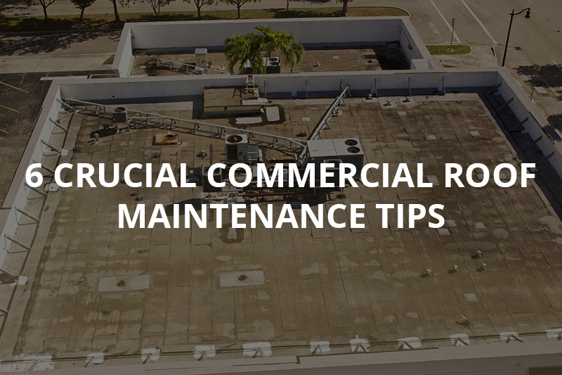 6 Crucial Commercial Roof Maintenance Tips