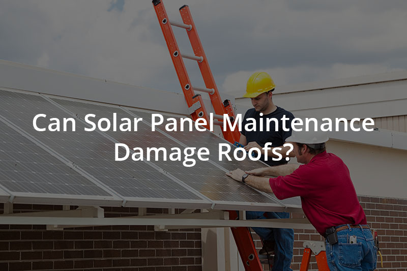 Maintenance workers fixing solar panels on a roof